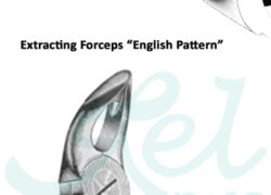 Special English Pattern Fig 2002 Upper Roots