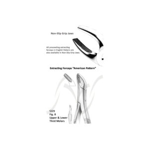 American Upper and Lower Third Molars Fig 8