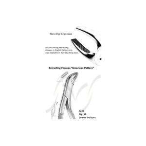 American Lower Incisors Fig 14