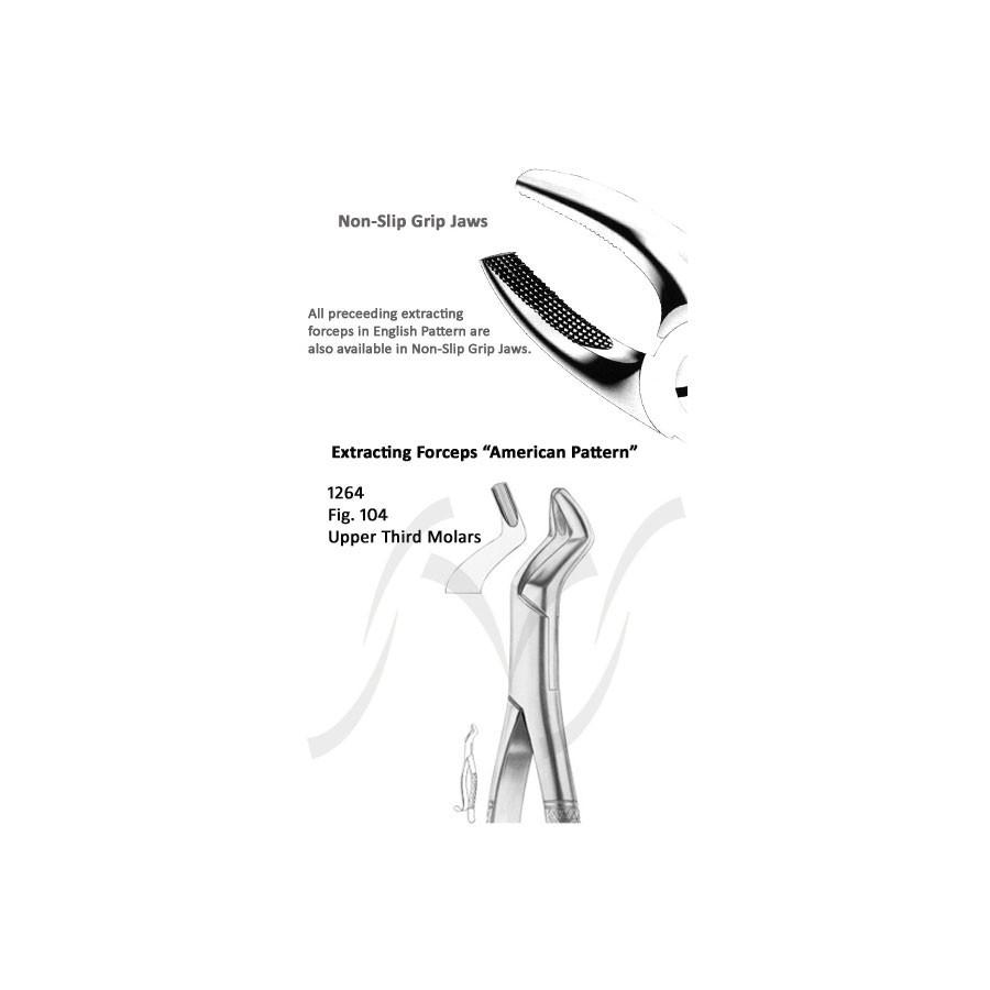 American Upper Third Molars Fig 104