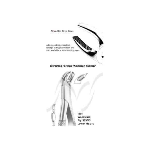 Woodword American Lower Molars Fig 335/ FS