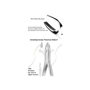 Henahan American Upper Incisors Fig 315/ 1 A
